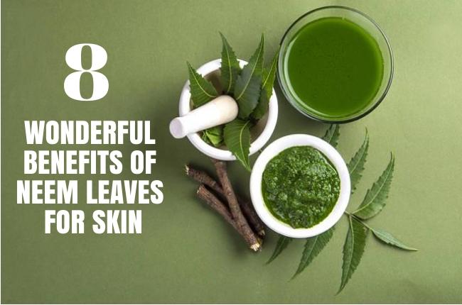 Benefits Of Neem Leaves For eczema Skin