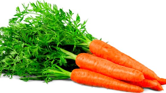 Морковь оранжевая