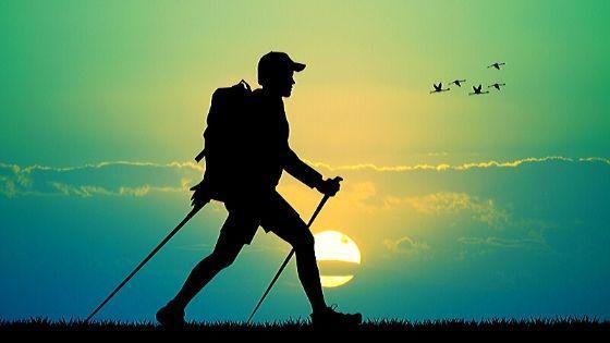 Скандинавская ходьба польза для здоровья