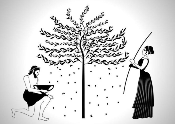 Сбор оливок в древней Греции