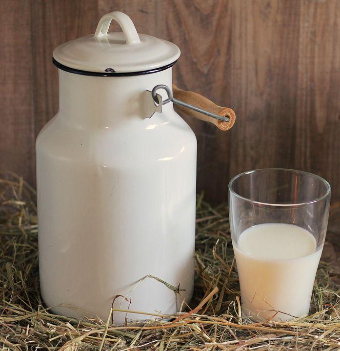 Pecuária de leite deve crescer este ano, projeta Embrapa