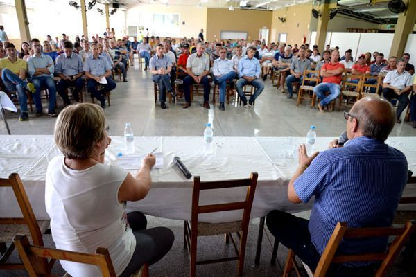 Leite: Paraná lidera avanço nacional em produção e produtividade
