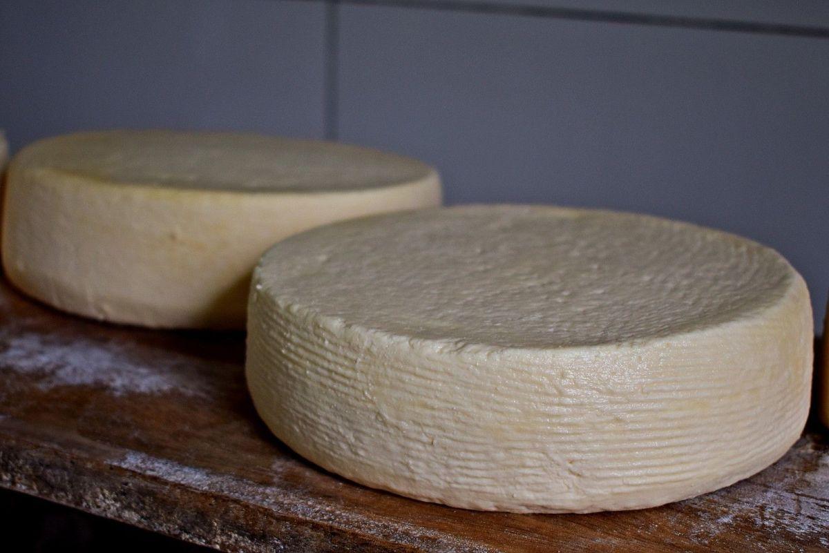 Com 25% da produção nacional, MG aposta no queijo como saída para crise e geração de renda
