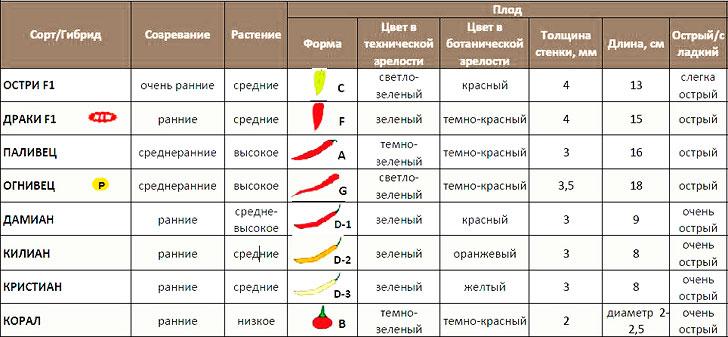 Kas yra naudingi svogūnai? - Aliejus
