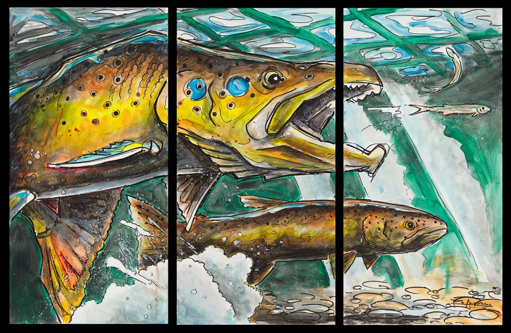 Ed Anderson Art Boise Brown Trout The Chase