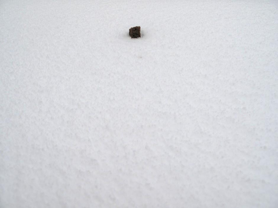 Naabrimaja korsten I Foto: Marko Mäetamm