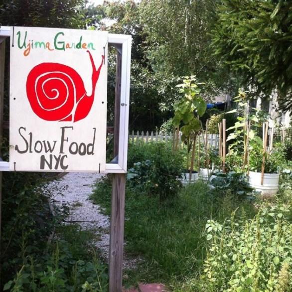 Ujima Educational Community Garden, Brooklyn, NY, December 18, 2013, photograph courtesy of Slow Food NYC via Facebook.