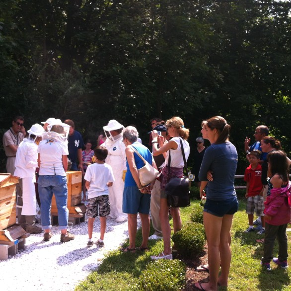 Bee Whisperers' Workshop at Sands Point Preserve, NY, photograph by Nancy Kheck.
