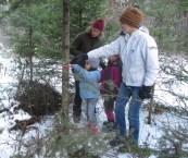 Labus Christmas Tree Farm