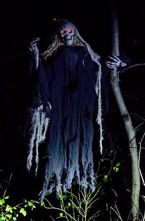 Haunted Trail 2014