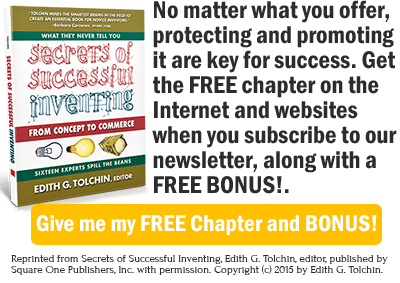 No matter what you offer, protecting and promoting it are key for success. Get the FREE chapter on the Internet and websites when you subscribe to our newsletter, along with a FREE BONUS!.