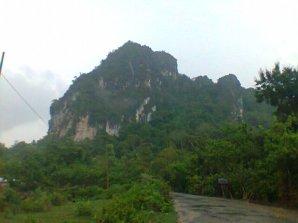 Kalau musim hujan, Kupang terlihat hijau seperti ini. Tapi foto ini bukan di Kota Kupang, tapi di daerah Amfoang. Gunung di belakang itu adalah gunung marmer. Banyak investor yang bernafsu memotong gunung batu itu tapi masyarakat menolak keras karena penambangan merusak lingkungan dan mata pencaharian petani. (eddy mesakh)