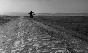 Kenan Hulusi Koray (1906 – 1943) – Tarlaya Çevrilen Su (Bahar Hikayeleri, 1939)
