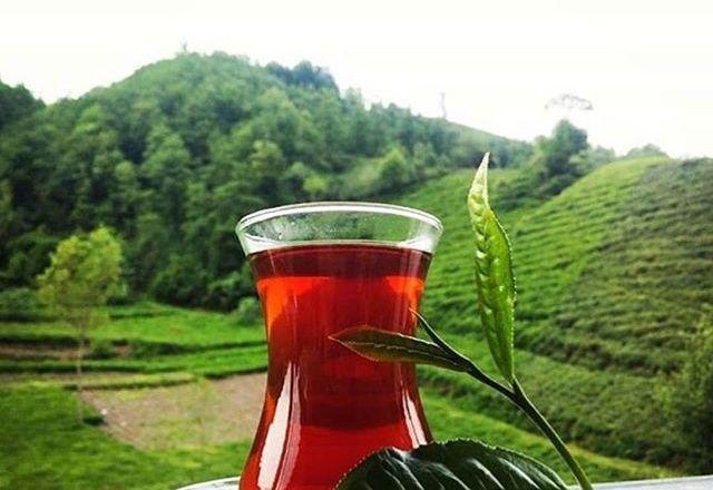 Türk Edebiyatı'nda Çay