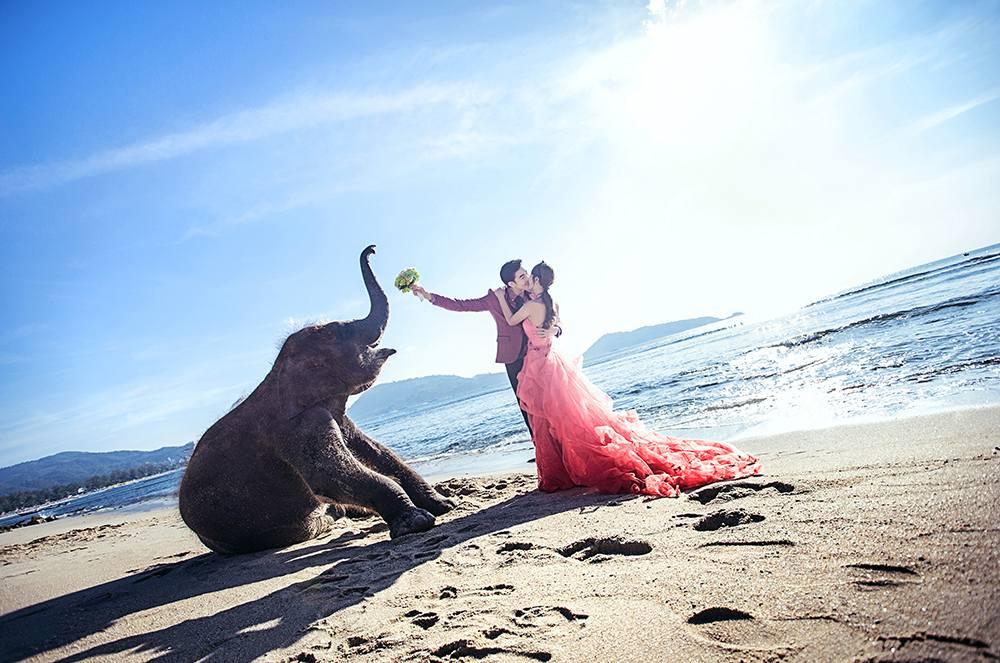 台北婚攝熊大推薦-常熟婚紗攝影工作室