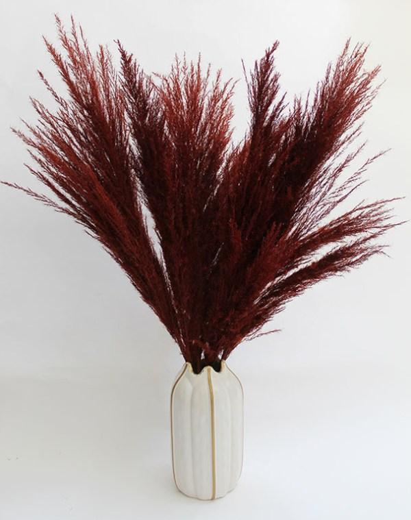 Pampas Grass in Vase