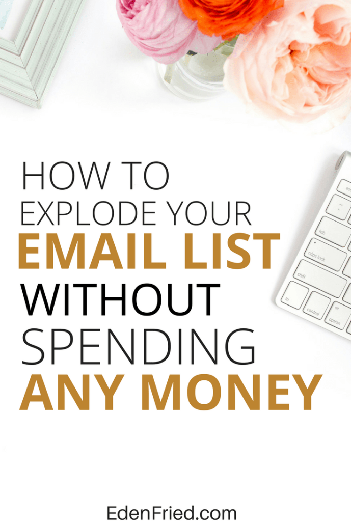 how to grow your email list on a budget