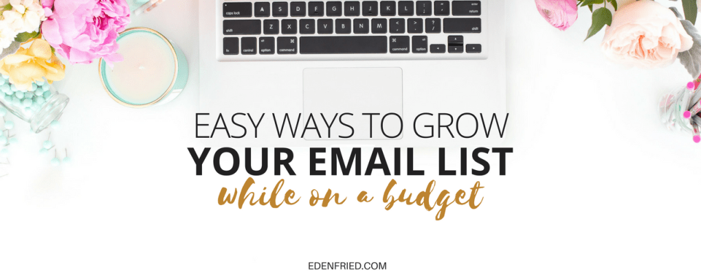 grow your email list on a budget