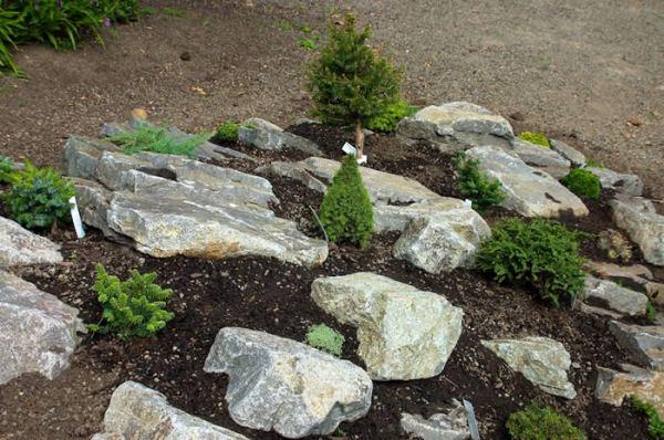 eden gardening kenya envision