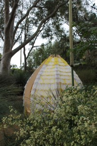 house-for-a-lost-tree-in-the-native-garden-ainslie-murray