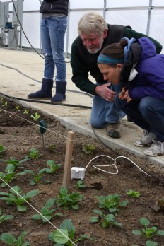 Director of Sustainable Agriculture, Allen Matthews, and Food Studies student Esther Erbe check a soil moisture sensor in the Solar High Tunnel.