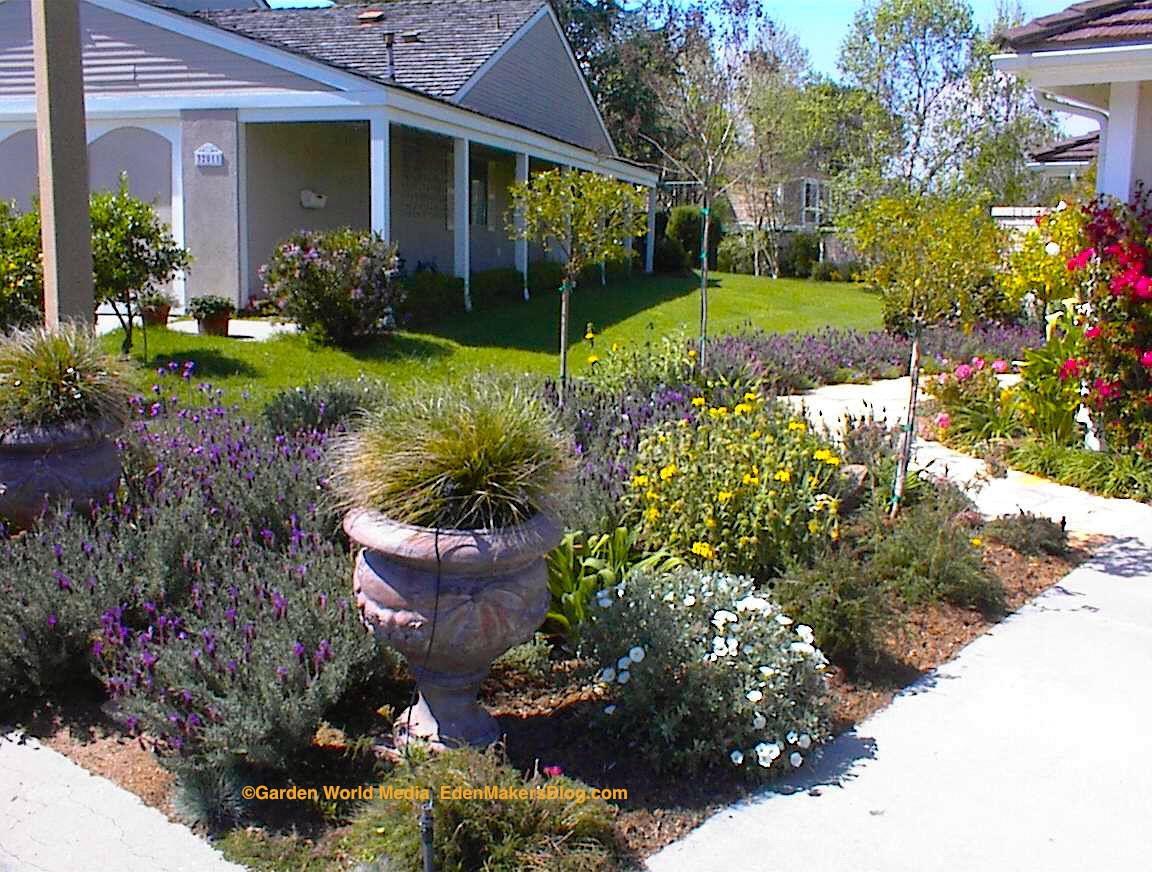 Backyard Planting Ideas