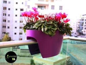 purple greenbo balcony planter