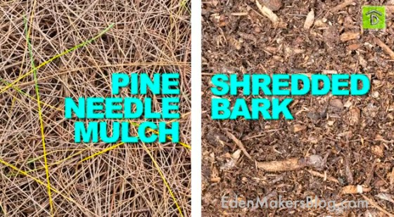Pine_Needle_Wood_Bark_Garden_Mulchwill help reduce amount of weeds that emerge.