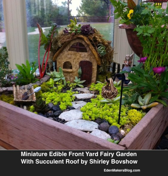 Edible Miniature Fairy Garden with-Succulent Roof by shirley Bovshow