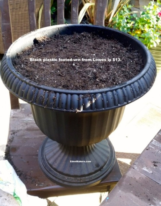 black-plastic-urn-with-pedestal-stand-lowes-shirley-bovshow