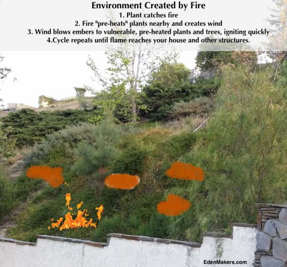 how-fire-spreads-uphill-environment-created-by-fire-edenmakers.com