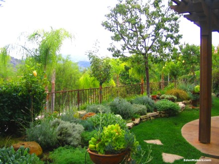 Raised-mediterranean-style-garden-low-water-plants-shirley-bovshow-edenmaker-blog