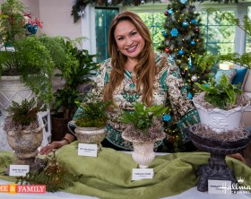 shirley-bovshow-garden-landscape-designer-expert-home-and-family-show-fern-plant-display