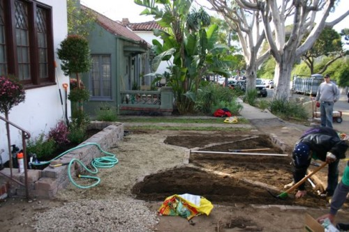 carving out the knot garden beds