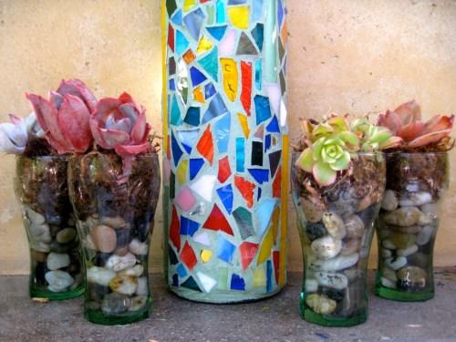 close up of succulent plants in coca cola glasses