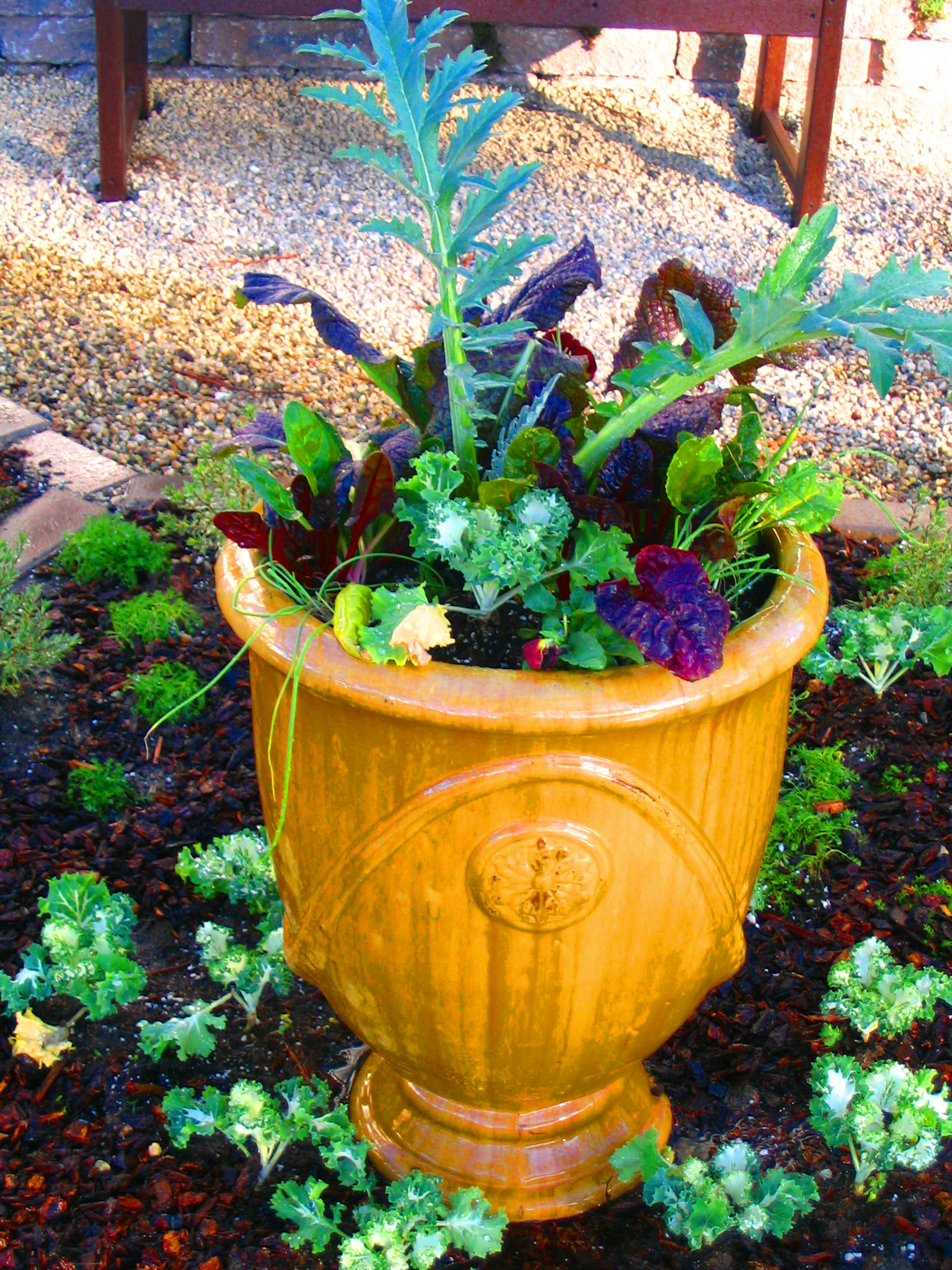 French Urn In Eggnog Color For Edible Herb Garden