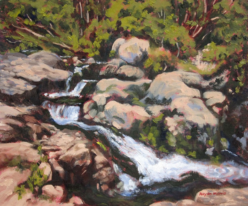 Dappled Shade, Aira Beck, oil on board, 25x35cm