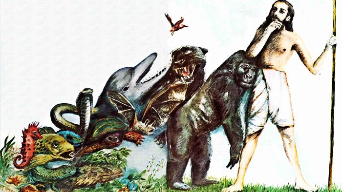 Problema para la evolución: El eslabón Perdido