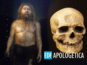 El Hombre de Cromagnon | Fósiles de la Evolución - Apologetica EDF