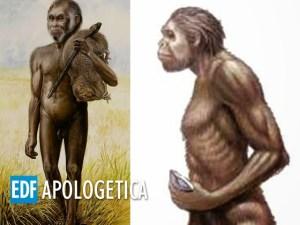 El Hombre de Java | Fósiles de la Evolución - Apologetica EDF