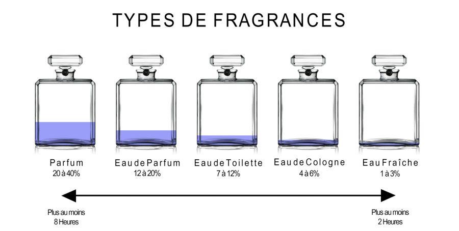 Comment choisir son parfum schéma types fragrances