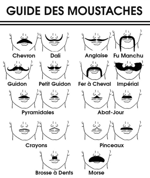 Comment choisir sa moustache guide