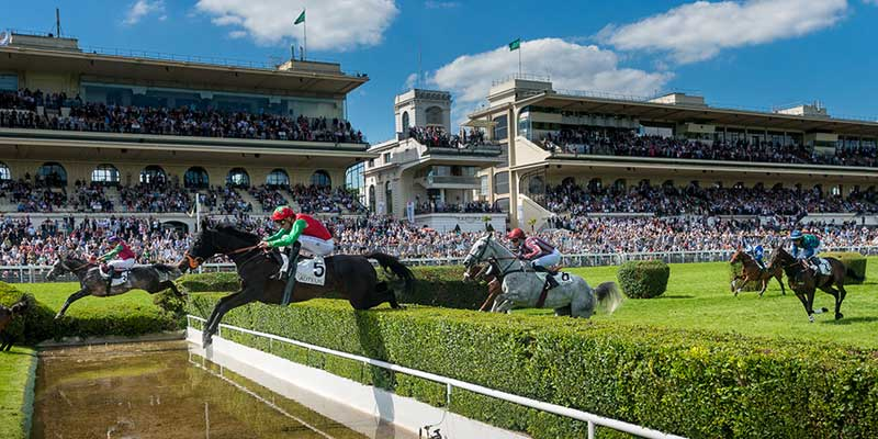 saut de chevaux hippodrome
