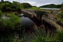 """Grassy Bridge. Unos de los puentes que """"dividen"""" los lagos de Stackpole Estate."""