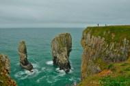 Turistas en el risco dan una escala del tamaño de las más famosas columnas de roca del sector: Elegug Stacks.