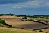 En los alrededores existen muchas granjas. En esta época el color predominante era el dorado del trigo.
