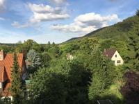 Hotel Brauner Hirsch Bad Harzburg - Compare Deals