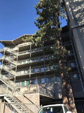 Pepper Tree Inn Tahoe City Compare Deals