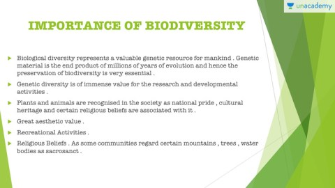Importance Of Biodiversity And Biodiversity Loss Crash