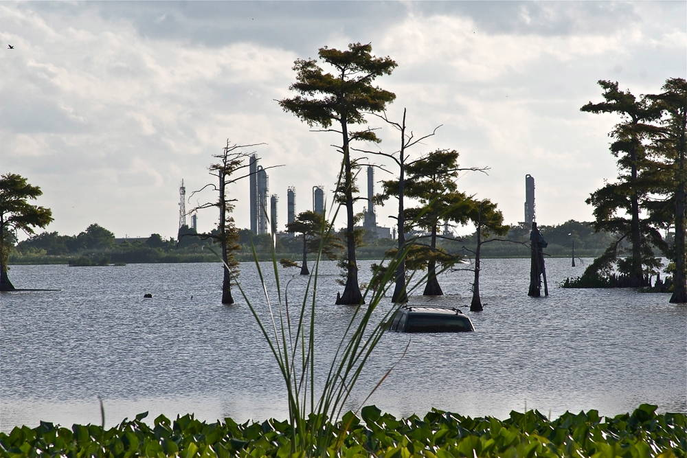 Louisiana Sinking. Photograph by Anne McClintock.